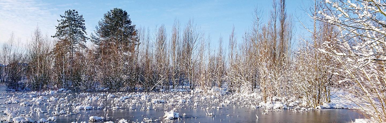 À Sevran (93), la ville a converti la friche industrielle Kodak en parc paysager à haute valeur écologique.