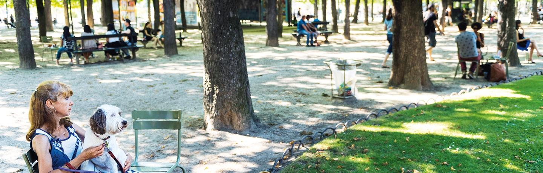 Remettre la nature au cœur de la ville