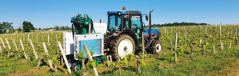 Vignes: des UV pour limiter les pesticides!